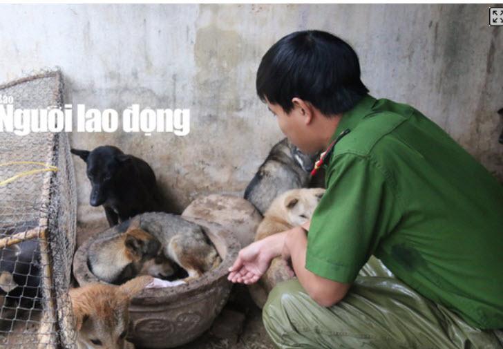 """Được cứu khỏi """"cẩu tặc"""", 2 chú cún chào đời tại trụ sở công an - 5"""