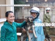 """Tin tức trong ngày - Được cứu khỏi """"cẩu tặc"""", 2 chú cún chào đời tại trụ sở công an"""
