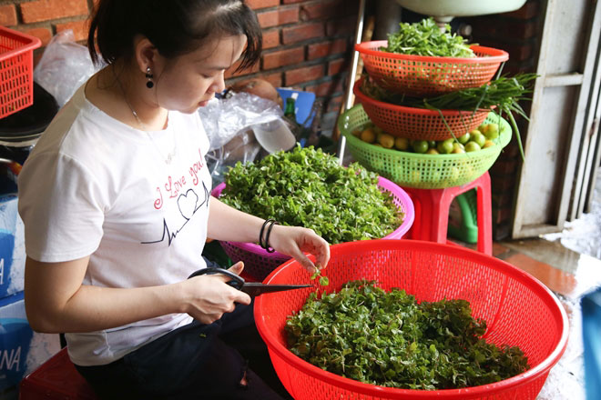1.200 CEO APEC sẽ thưởng thức mỳ Quảng tại Đà Nẵng - 2