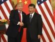 """Ông Trump hết lời khen Trung Quốc vì đã """"tận dụng Mỹ"""""""