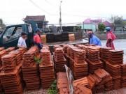 Khánh Hòa, Quảng Nam: Rau xanh, gạch ngói, tôn lợp mái.. tăng chóng mặt sau bão