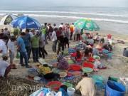 Sau bão số 12, ngư dân Đà Nẵng trúng đậm lộc biển, kéo lưới mỏi tay