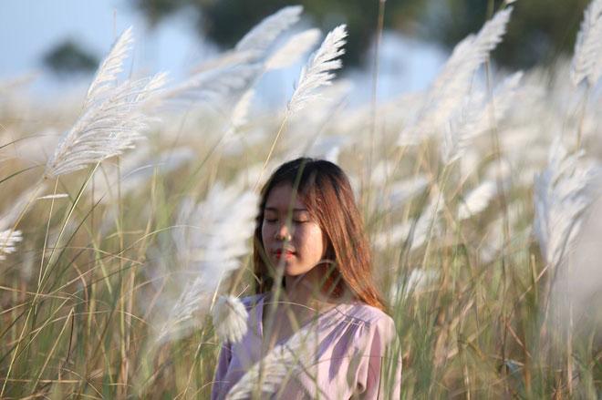 Du khách mê mẩn với hoa lau nở trắng Sơn Trà - 12