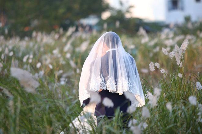 Du khách mê mẩn với hoa lau nở trắng Sơn Trà - 3