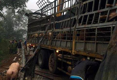 """Xôn xao chuyện xe chở lợn bị lật, người dân thi nhau """"hôi của"""" ở Lạng Sơn - 2"""