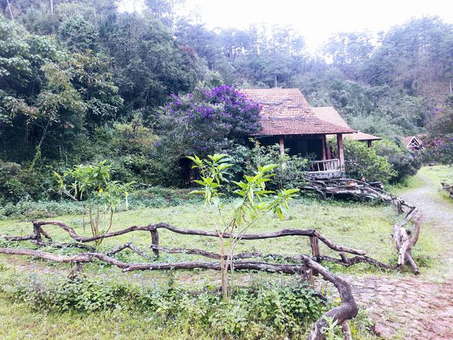 Ngôi làng có tên lạ lùng, đẹp như cổ tích ẩn mình giữa đồi thông Đà Lạt - 11