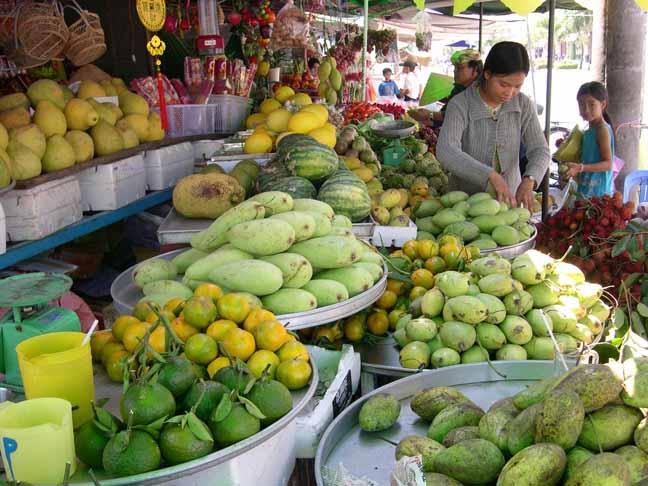 """Cơ hội thu """"nhân dân tệ"""" từ hoa quả và nông sản Việt xuất sang TQ - 2"""
