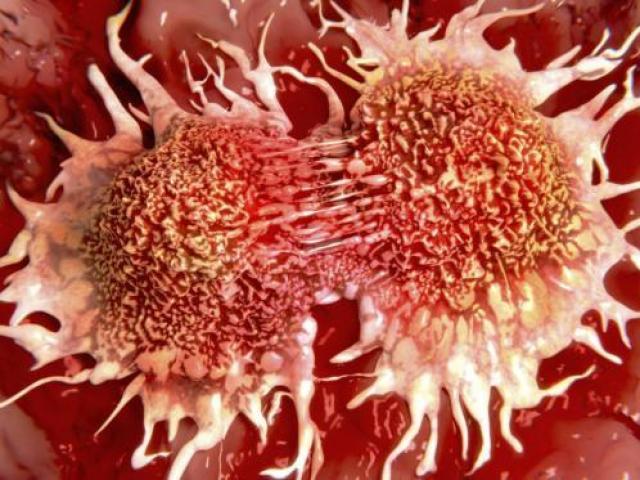 Bay đường dài có thể tăng nguy cơ ung thư - 2