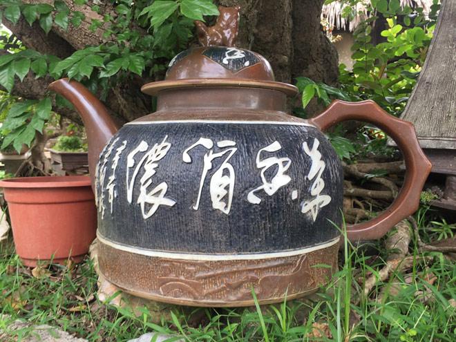 """Ngắm """"siêu cây"""" trâm vối 500 năm tuổi """"có một không hai"""" ở Việt Nam - 8"""