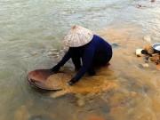 Người dân đổ ra sông mót vàng sa khoáng sau lũ