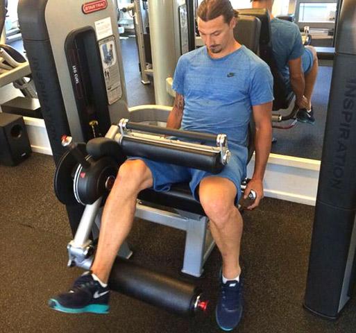 """Đằng sau cơ bắp đồ sộ của """"gã điên sân cỏ"""" Zlatan Ibrahimovic - 3"""