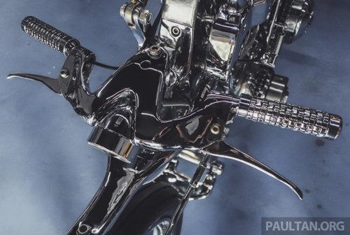"""Bone X: """"Bộ xương di động"""" của Eastern Bobber - 6"""