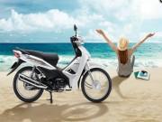 Honda Wave Alpha 2018 ra mắt, giá không đổi