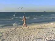 Người đẹp bikini bị đàn chim truy đuổi trên bãi biển