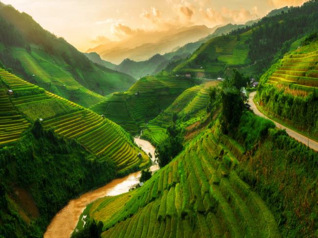 Mù Cang Chải, Việt Nam: Vùng miền núi này có nhiều ruộng bậc thang xanh mướt, khiến du khách có cảm giác như bước vào một bức tranh vẽ. Tùy vào mùa trong năm, màu sắc của cánh đồng lúa chuyển từ màu xanh sang vàng hay nâu.