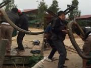 Nóng 24h qua: Xuất hiện rắn nặng 20kg, dài hơn 2m ở Vĩnh Phúc