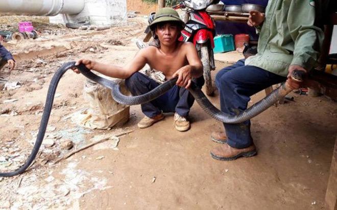 Rùng mình xem lại cảnh người dân vây bắt những con rắn khổng lồ - 3