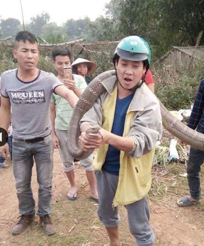 Rùng mình xem lại cảnh người dân vây bắt những con rắn khổng lồ - 2