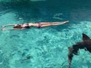 Thót tim cô dâu bị cá mập tấn công khi đi tuần trăng mật