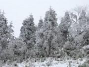 Đợt rét đậm, rét hại nhất từ đầu đông ở miền Bắc mạnh cỡ nào?