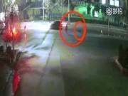 TQ: Chó ngao Tây Tạng nhảy bổ vào cắn xé người trên phố