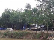 Những bí ẩn ở  trại chó  Thanh Trì