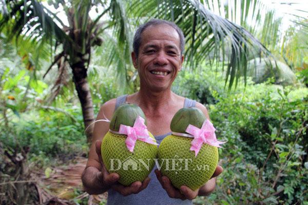 Bỏ ăn, bỏ ngủ ngồi trên cây, U60 'nặn' dừa hồ lô lạ mắt bán Tết 2018 - 1
