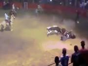 Bò tót điên cuồng tấn công người và ngựa trong đấu trường ở Mexico