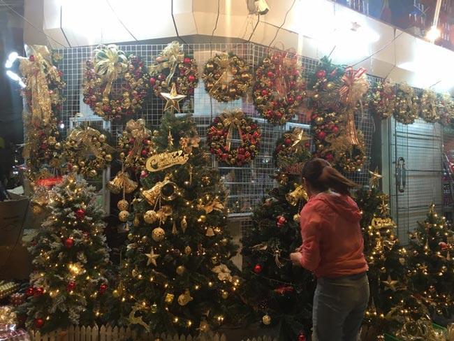 Cận kề Giáng sinh, cây thông Noel loạn giá - 5