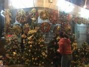 Cận kề Giáng sinh, cây thông Noel loạn giá
