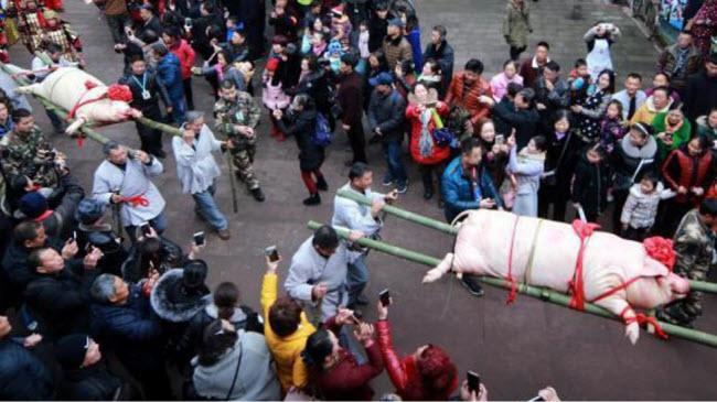 """Du khách đổ xô xem lễ tế lợn có """"một không hai"""" ở Trung Quốc - 1"""