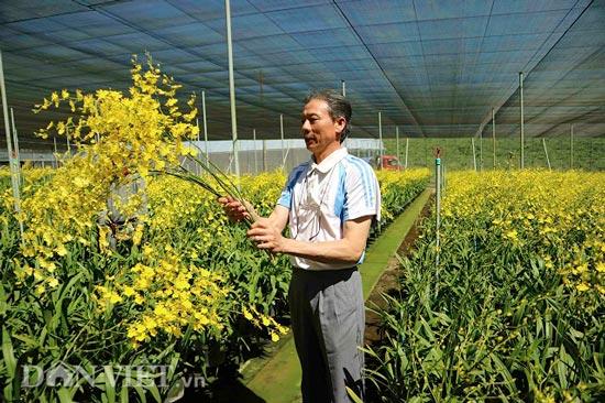 """Giảng viên về vườn """"nghịch đất"""" trồng lan Vũ nữ, lãi 50 triệu/tháng - 3"""