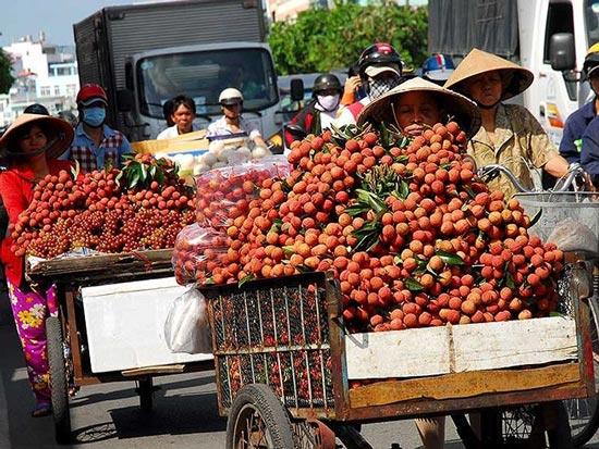 Kỷ lục mới: Rau quả mang về 3,5 tỉ USD cho Việt Nam - 1