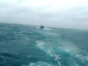 15 thuyền viên hoảng loạn, suy sụp giữa biển khi sóng cao 7m