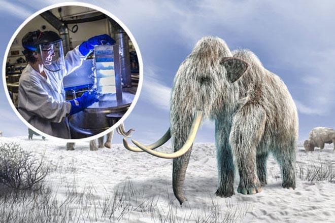 Những sinh vật đã tuyệt chủng trong Công viên kỷ Jura sắp được hồi sinh? - 1