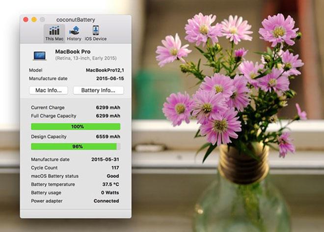 Cách kiểm tra số lần sạc trên iPhone, iPad - 3