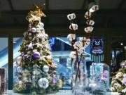 Không phải thông, cây bông mới là mặt hàng Noel yêu thích ở TQ, giá lên tới hơn 600 nghìn/cây