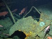 NÓNG nhất tuần: Tàu tìm MH370 phát hiện bí mật 103 năm dưới đáy biển