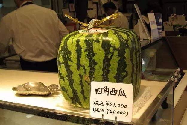 Chỉ giới nhà giàu mới tới cửa hàng này để mua hoa quả với mức giá trên trời - 3