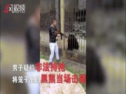 Thế giới - Phẫn nộ cảnh du khách Trung Quốc giương súng bắn chết gấu đen