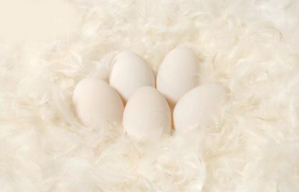8 cách ủ tóc bằng trứng gà - 2