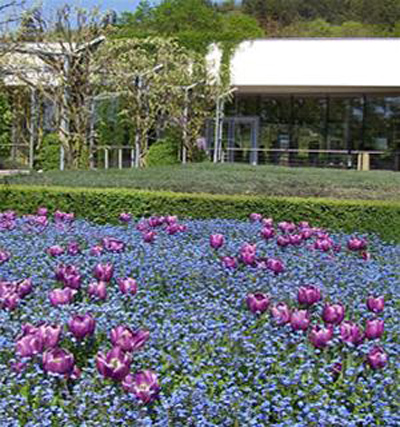 Những khu vườn đẹp nhất thế giới - 6
