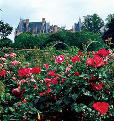 Những khu vườn đẹp nhất thế giới - 8