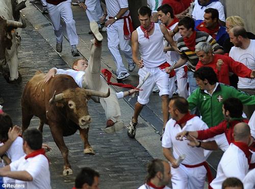 Đấu bò… tử nạn - 4