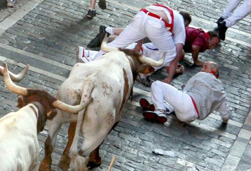 Đấu bò… tử nạn - 2