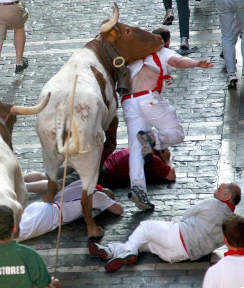 Đấu bò… tử nạn - 3