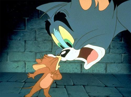 Chuột vuốt râu mèo - 4