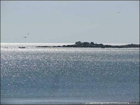 Các bãi biển Đà Nẵng - 1