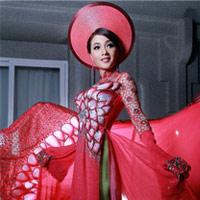 Ngắm áo dài dân tộc ấn tượng của Quý bà Việt Nam