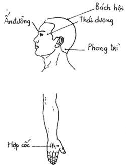 Chữa bệnh không dùng thuốc: Trị chứng đau đầu - 2